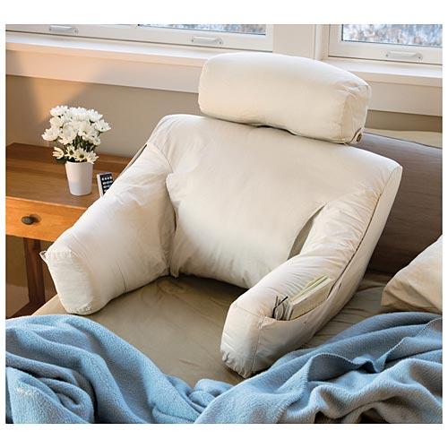 BedBugsorg  The Webs 1 Bed Bug Resource